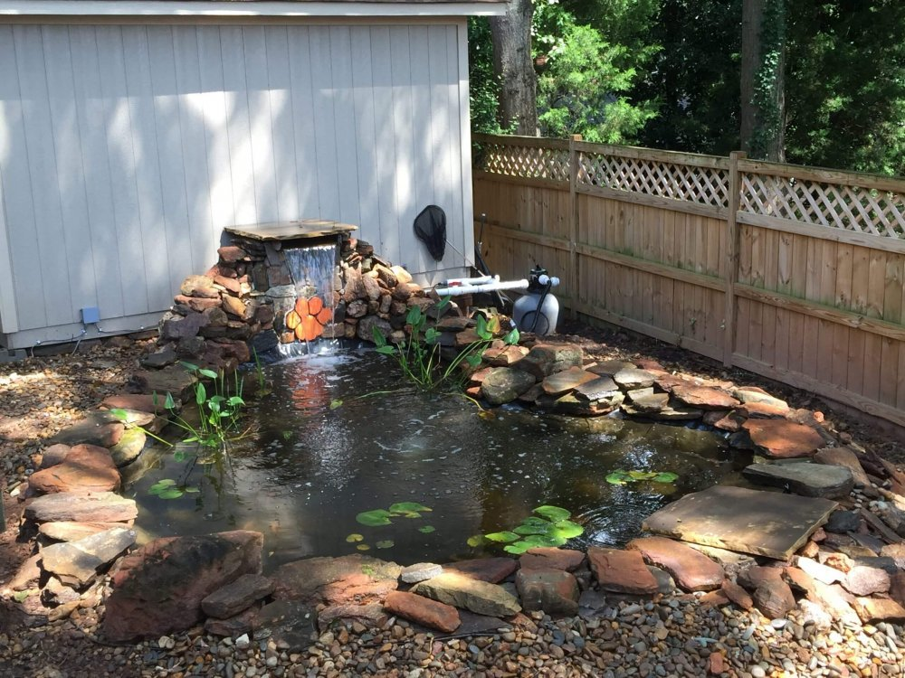 The Secret of Water Features for Stress Relief